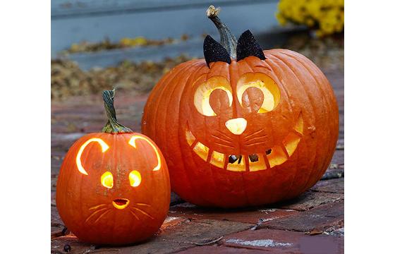 Ideias Artesanato Halloween ~ Ideias para Halloween Portal das Crianças