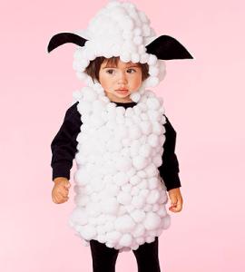 disfarce-ovelha