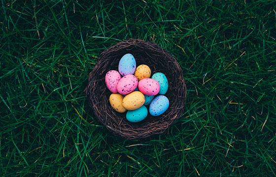 Jogo Caça aos Ovos